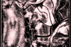 Michael Schaffer -entity55